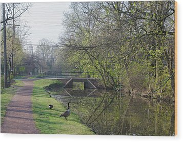 The Delaware Canal - Morrisville Pennsylvania Wood Print by Bill Cannon