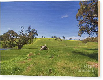 Wood Print featuring the photograph The Distant Hill by Douglas Barnard