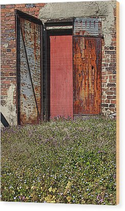 The Door Wood Print by Alan Skonieczny