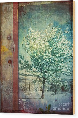The Door And The Tree Wood Print by Tara Turner
