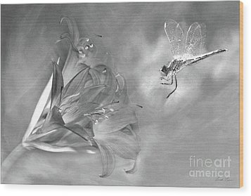 The Dragonfly And The Flower Wood Print