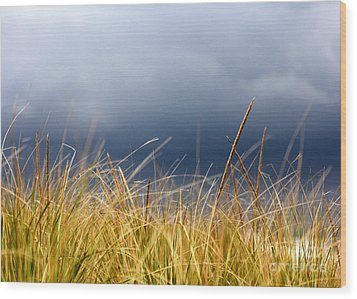 Wood Print featuring the photograph The Tall Grass Waves In The Wind by Dana DiPasquale