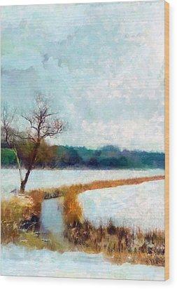The Dyke Wood Print