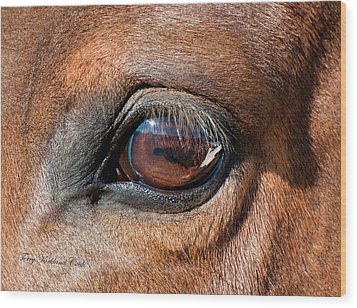 The Equine Eye Wood Print by Terry Kirkland Cook