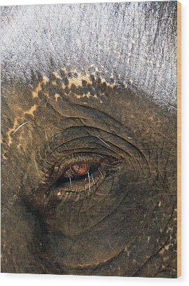 The Eye Of Wisdom Wood Print by Kelly Jones