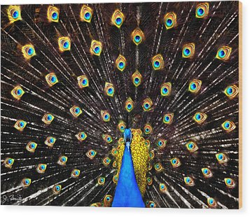 The Eyes Have It Wood Print by Joe Bonita