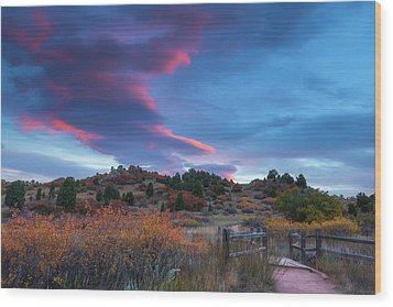 Wood Print featuring the photograph The Fall Meadow by Tim Reaves