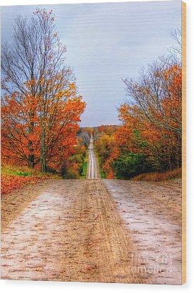 The Fall Road Wood Print by Michael Garyet