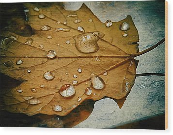The Fallen Leaf Wood Print