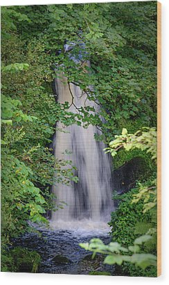 The Falls At Patie's Mill Wood Print