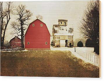 Wood Print featuring the photograph The Favorite by Julie Hamilton
