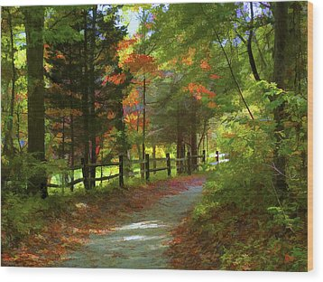 The Fence Wood Print by Jeff Breiman