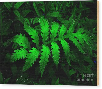 Wood Print featuring the photograph The Fern by Elfriede Fulda