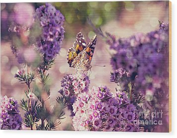 Wood Print featuring the photograph The First Day Of Summer by Linda Lees