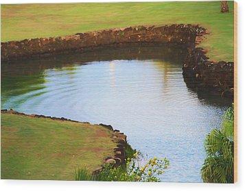 The Fish Pond Wood Print by Bonnie Follett