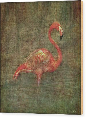 Wood Print featuring the photograph The Flamingo by Hanny Heim
