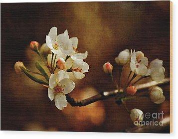 The Fleeting Sweetness Of Spring Wood Print by Lois Bryan