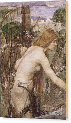 The Flower Picker  Wood Print by John William Waterhouse