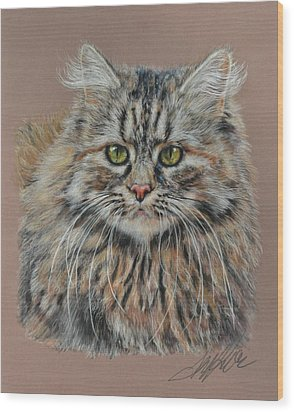 The Fluffy Feline Wood Print by Terry Kirkland Cook