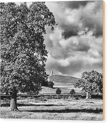 Old John Bradgate Park Wood Print by John Edwards