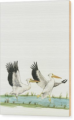 The Fox And The Pelicans Wood Print by Juan Bosco