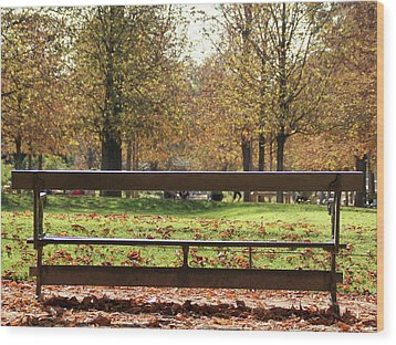 The French Bench And The Autumn Wood Print by Yoel Koskas
