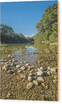 The Frio River In Texas Wood Print by Andre Babiak