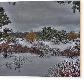 The Garden In Winter Wood Print by David Bearden