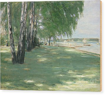 The Garden Of The Artist In Wannsee Wood Print by Max Liebermann