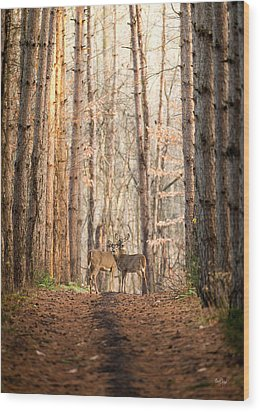 The Gift Wood Print by Everet Regal
