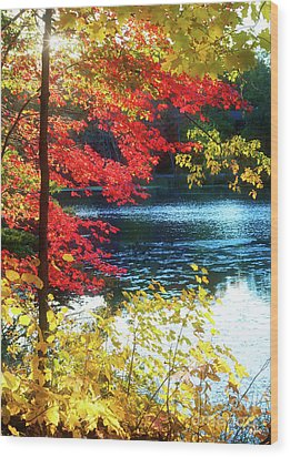 The Glory Of A New England Autumn Wood Print