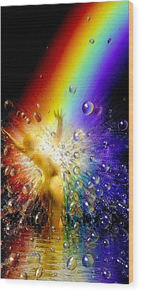 The Gold At The End Of The Rainbow Wood Print by Robby Donaghey