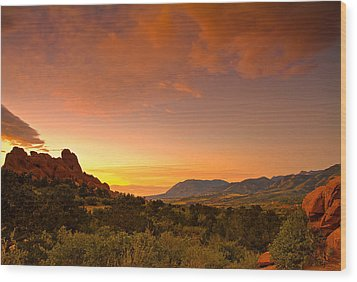 Wood Print featuring the photograph The Golden Hour by Tim Reaves