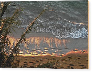 The Golden Moment IIi Wood Print