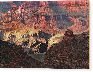 The Grand Canyon I Wood Print by Tom Prendergast