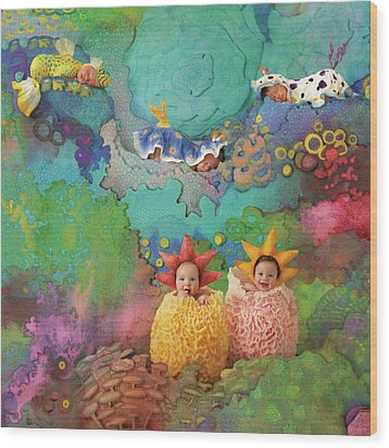 The Great Barrier Reef Wood Print by Anne Geddes