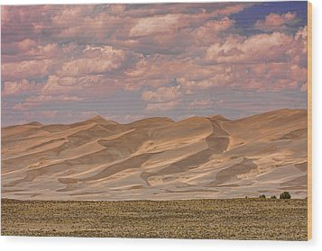 The Great Colorado Sand Dunes  177 Wood Print by James BO  Insogna