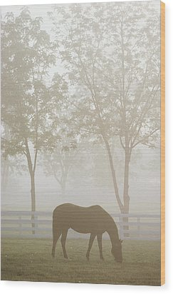 The Great Thoroughbred Gelding Forego Wood Print by Raymond Gehman