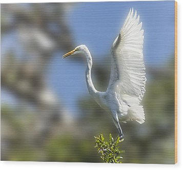 Wood Print featuring the photograph The Great White Egret by Paula Porterfield-Izzo
