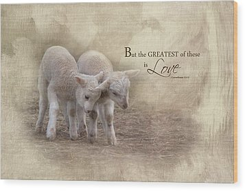 Wood Print featuring the photograph The Greatest Is Love by Robin-Lee Vieira