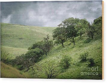 The Green Hills Of Home Wood Print by Ellen Cotton