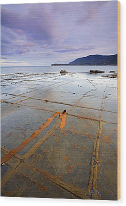 The Grid Wood Print by Mike  Dawson