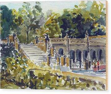 The Grotto Steps Wood Print by Chris Coyne