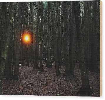 Wood Print featuring the photograph The Guiding Light by Debbie Oppermann