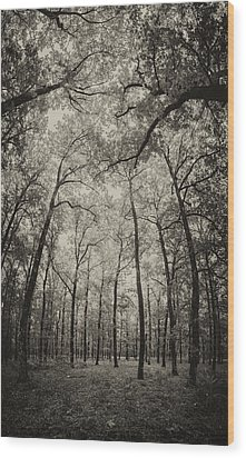 The Hands Of Nature Wood Print by Stavros Argyropoulos