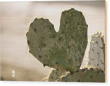 Wood Print featuring the photograph The Heart Of Texas by Debbie Karnes