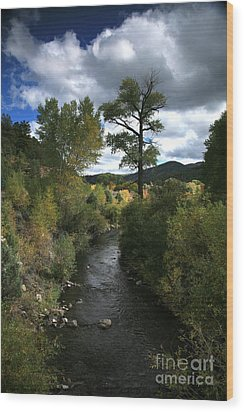 The High Road To Taos Wood Print by Timothy Johnson