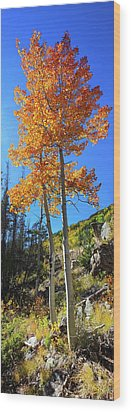 Wood Print featuring the photograph The Hillside - Panorama by Shane Bechler