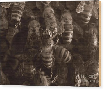 The Hive Wood Print by Jeff Breiman