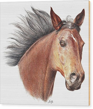 Wood Print featuring the drawing The Horse by Mike Ivey